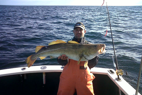 Codfish sportfishing charters machaca charters on cape for Martha s vineyard fishing charters